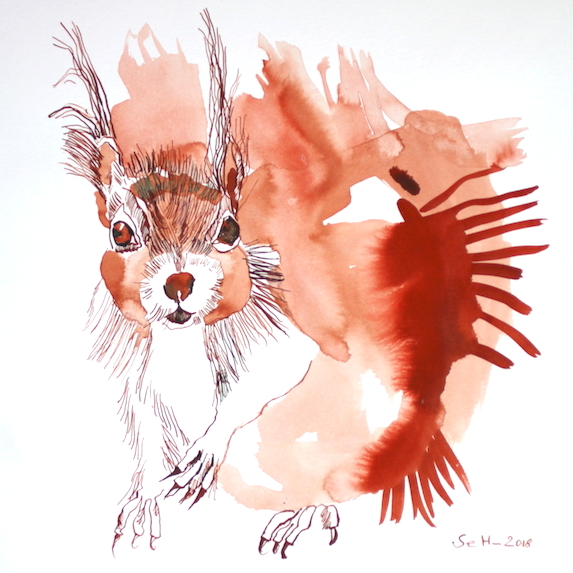 Eichhörnchen…